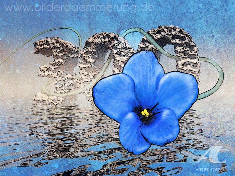 http://cropfm.at/images/Blaueblume-750.jpg